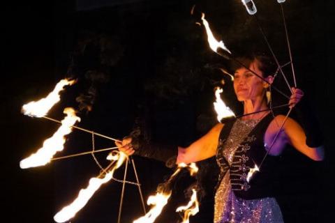 Harmonische-Show-Violin-Feuer-Licht-1
