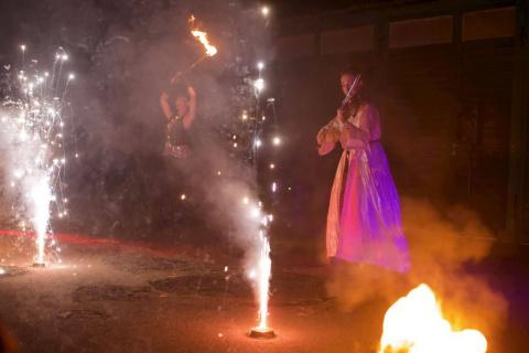 Harmonische-Show-Violin-Feuer-Licht-8